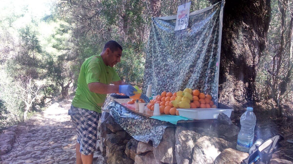 Juice stop - freshly squeezed oranges and lemons