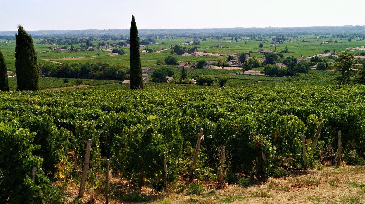 looking down over the plains of st emilion and the vineyards