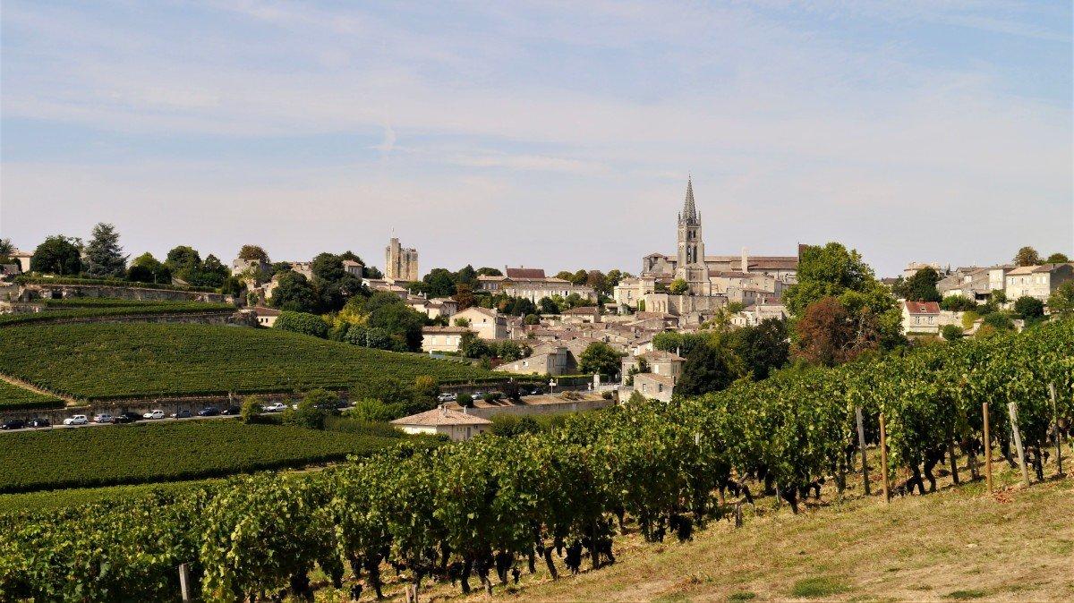 Activity Reviews Bordeaux