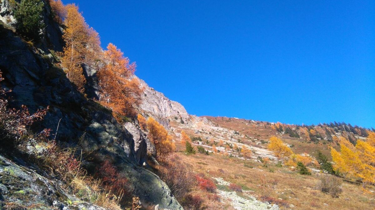 Autumn colours in a hike in chamonix
