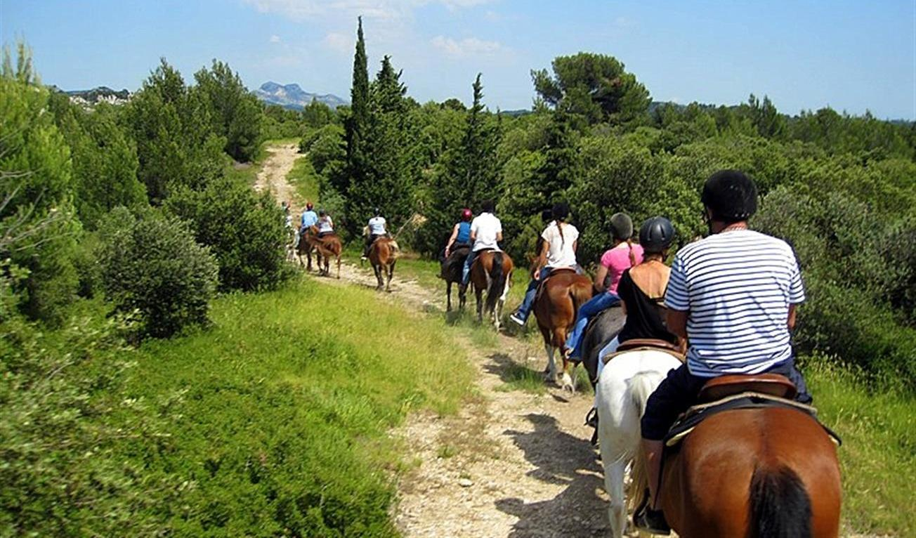 Family Activities Guide Provence