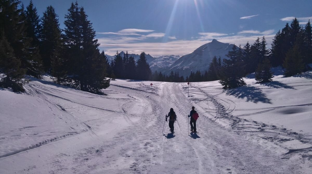 snow shoeing in les houches chamonix