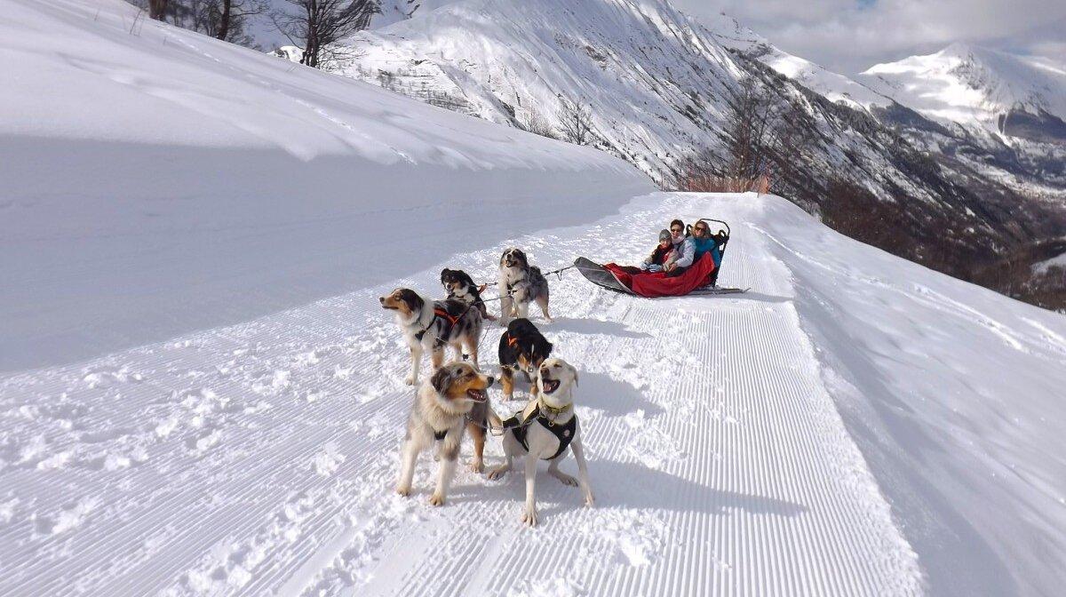 husky sledding in val thorens