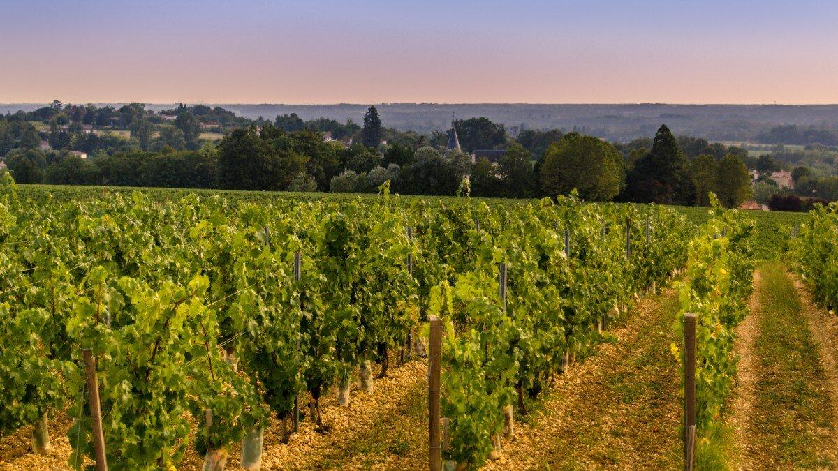 Geography Bordeaux