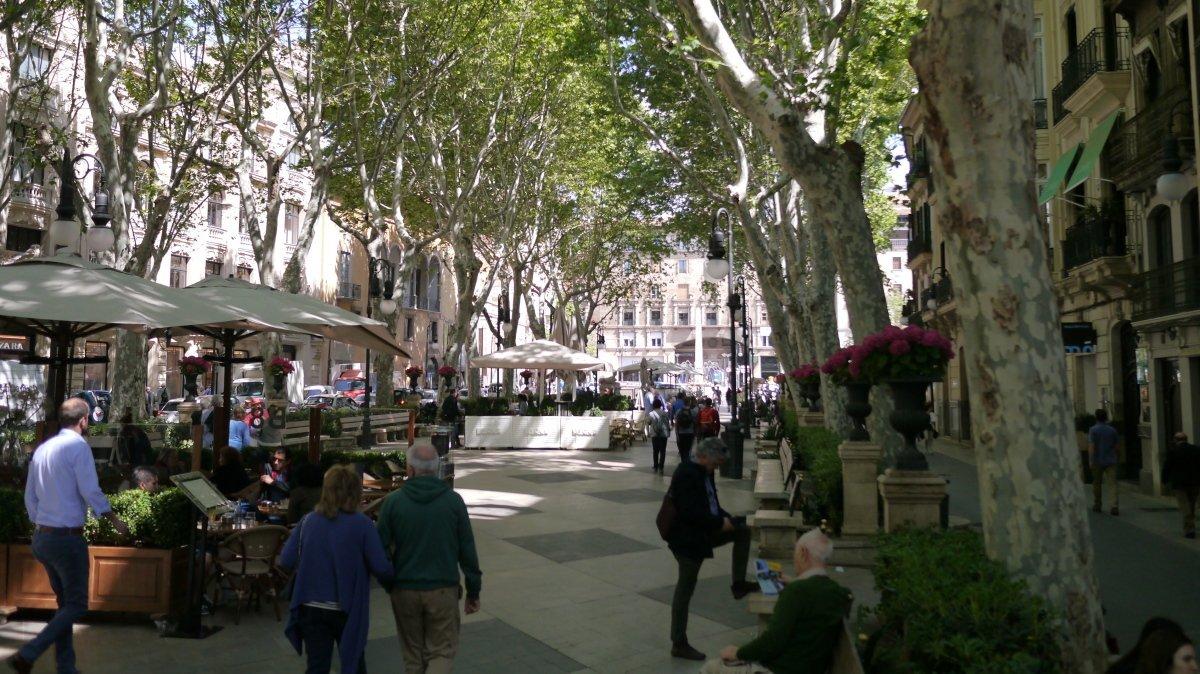 City Walks Mallorca