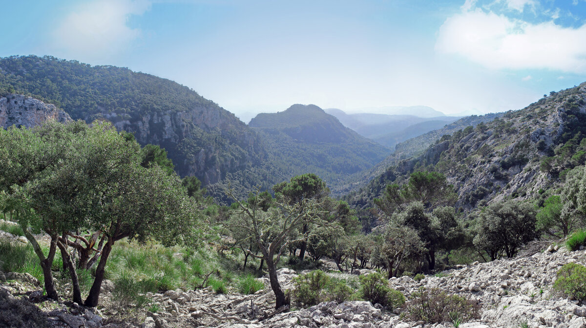 The serra de tramuntana mountain range in mallorca