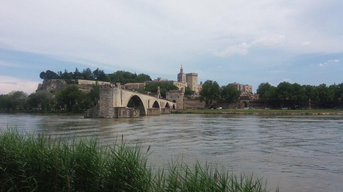 Pont d'avignon in avignon as seen from the ile de la barthelasse