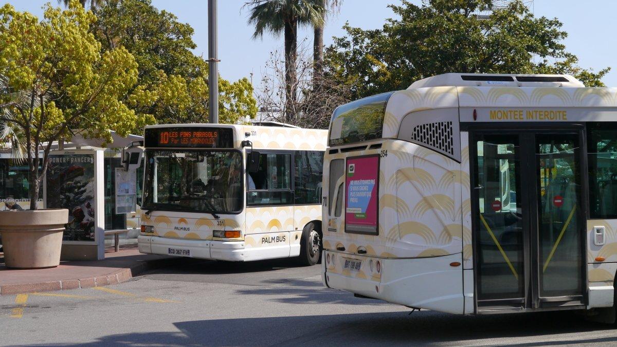 Bus Services Cannes