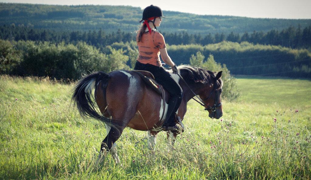 Horse Riding Nice