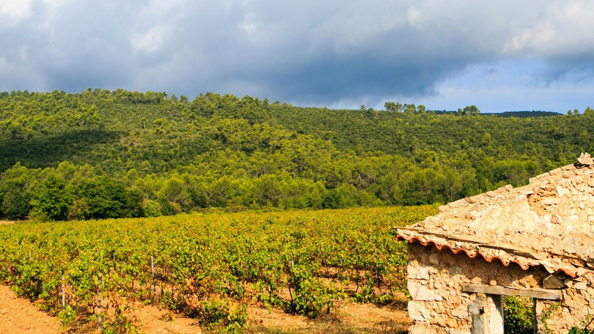 Vineyards & Estates Provence