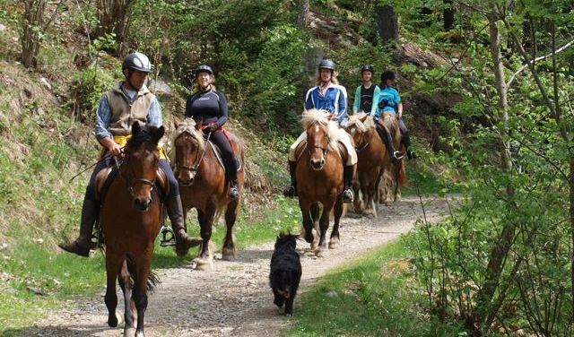 Horse Riding Les 2 Alpes