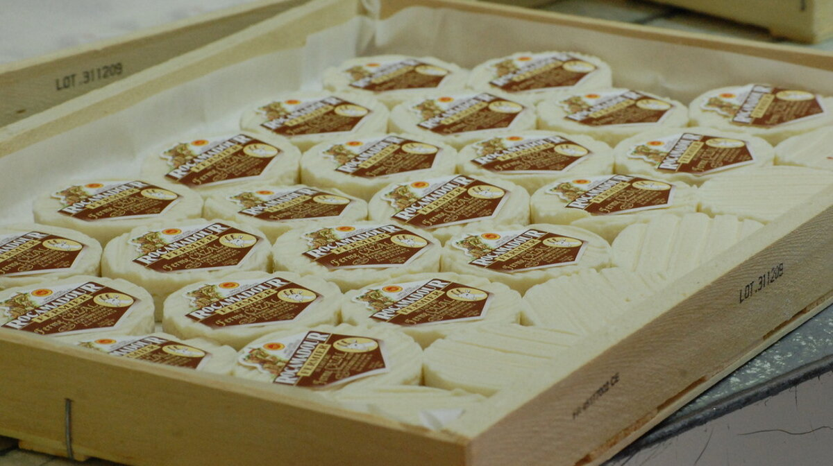 a tray of rocamadour cheese
