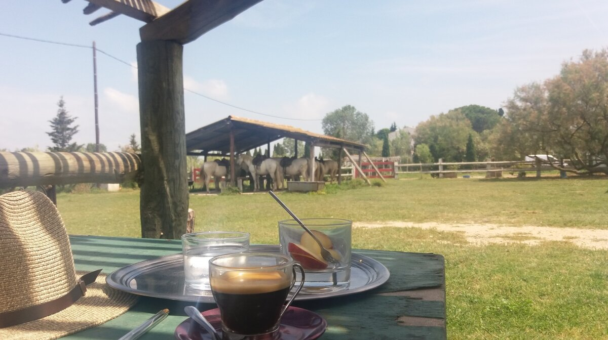 a coffee on a tray at a ranch