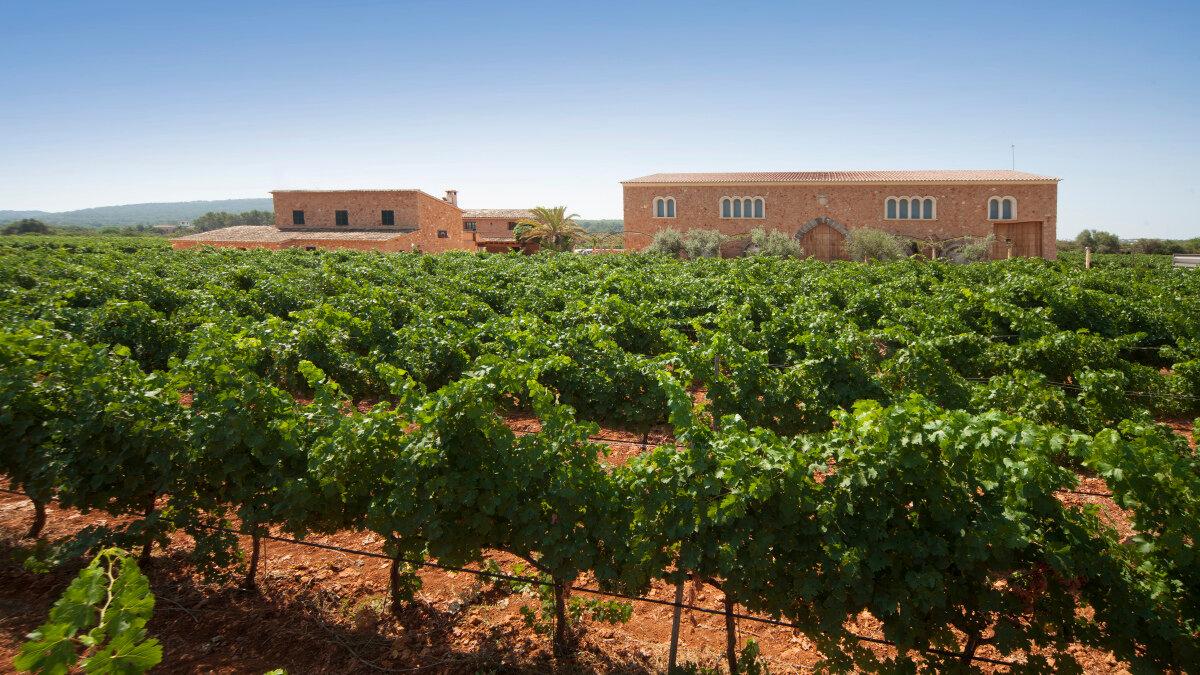 Vineyards & Estates Mallorca