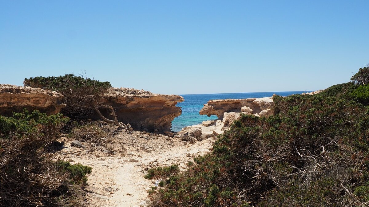 Hike through rugged wilderness of south ibiza