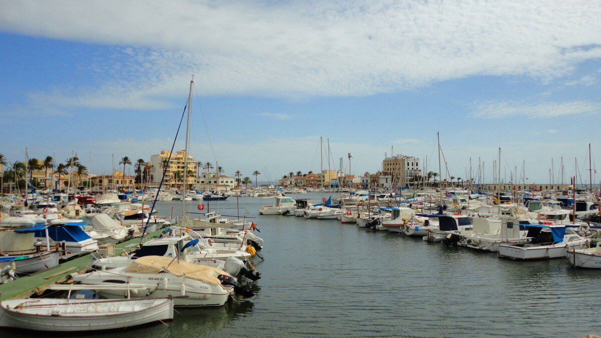 photograph of boats in portixol harbour