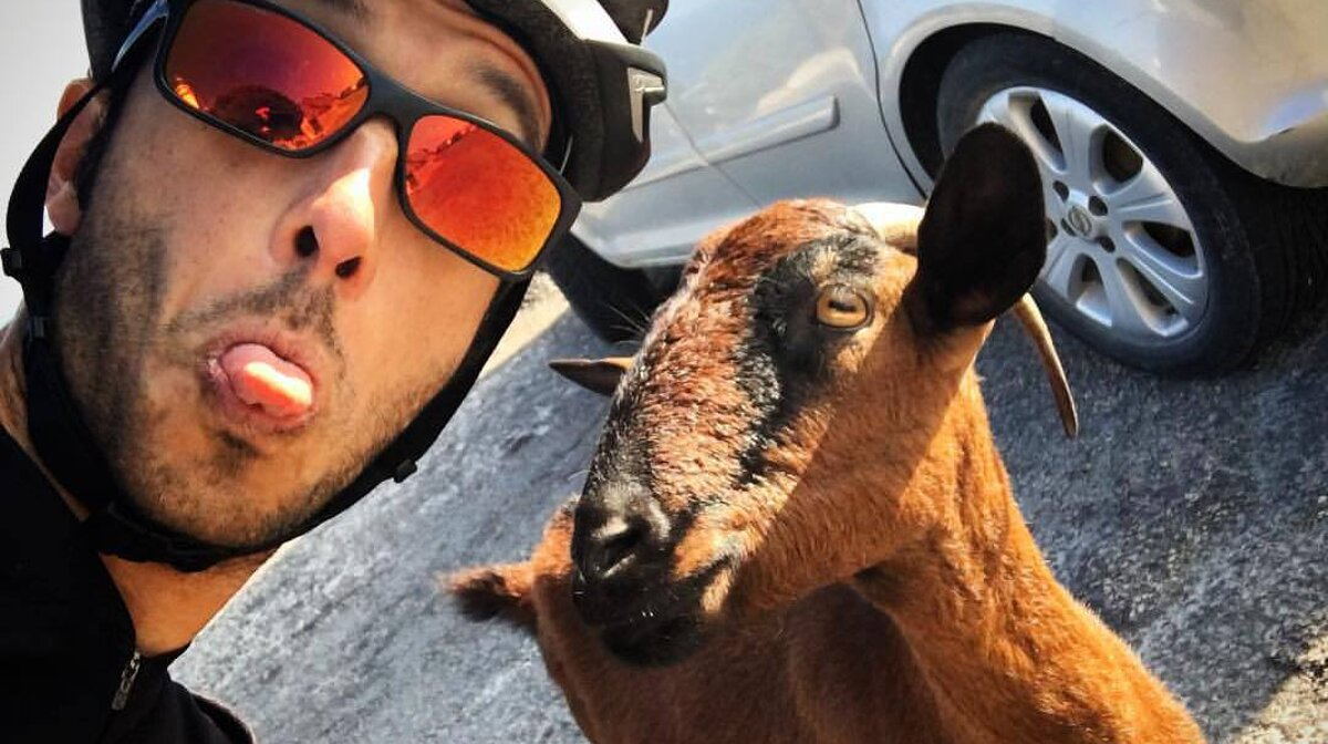 meeting your perfect match - cyclist & goat