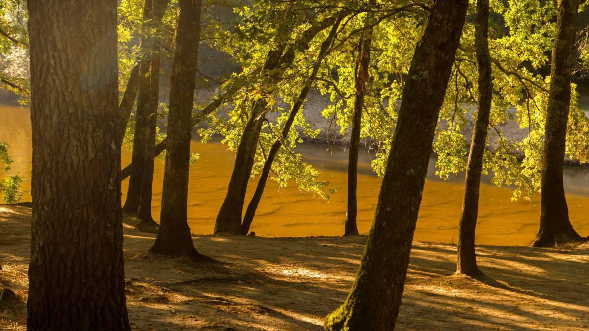 Nature Reserves & Parks Bordeaux