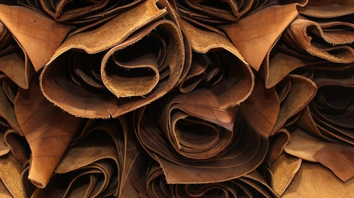 leather tanning in Grasse