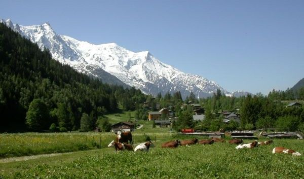 Hiking & Walking Routes Chamonix