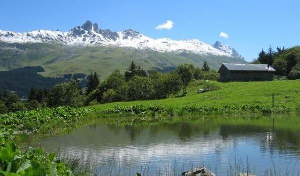 Hiking & Walking Guide Meribel