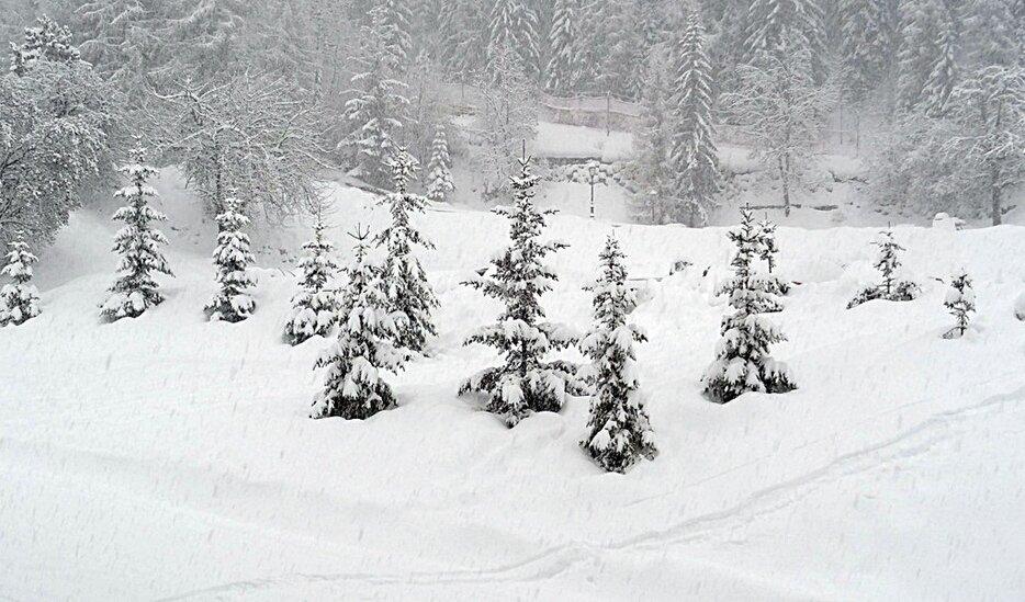 Dump Alert Les 2 Alpes